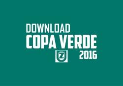 2016 COPA VERDE ARTE2